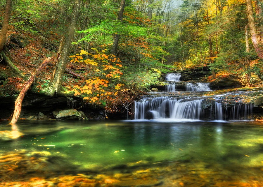 forests-trees-autumn-peaceful-forest-emerald-stream-waterfall-fall-summer-sun-beautiful-shadows-nature-water-cascades-wallpaper-wide